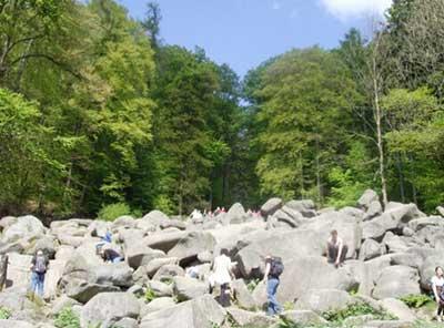 松涛石海 德国奥登森林地质公园美景