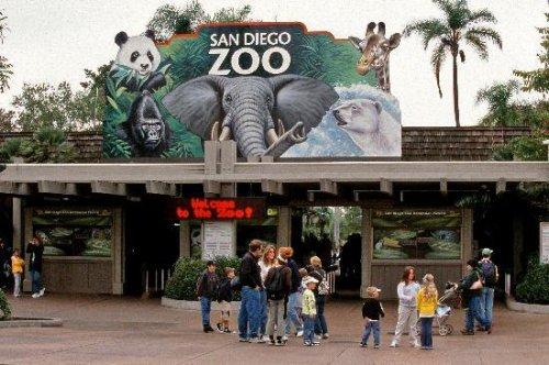 旅游热点的美国十大动物园