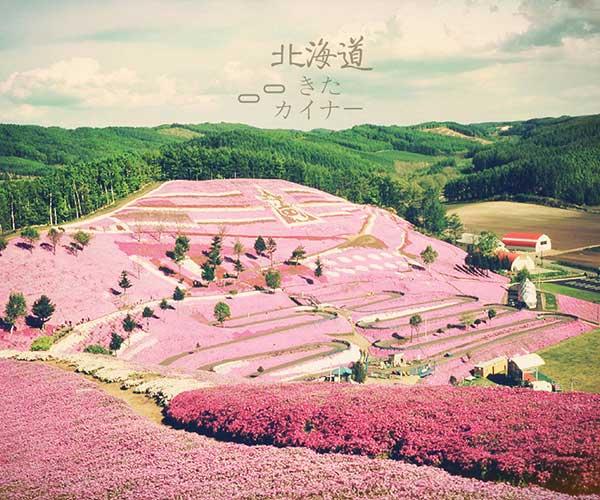 无锡到日本北海道旅游 - 北海道 - 日韩 - 出境旅游