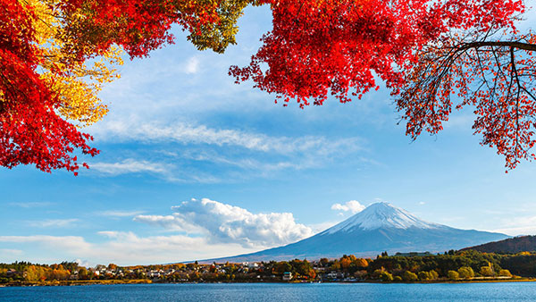 【中旅自组】日本本州美食温泉6日横贯之旅(无锡直飞)