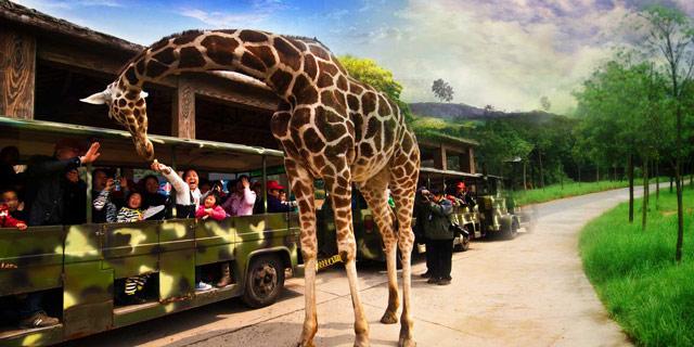 杭州野生动物园亲子乐园精彩特价一日游
