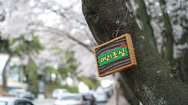 【中旅自组】韩国首尔+釜山+庆州6日半自助游(无锡直飞)