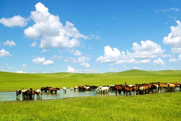 A2线:北戴河、承德、坝上草原、锡林郭勒大草原、多伦诺尔纯玩环线全景六日游