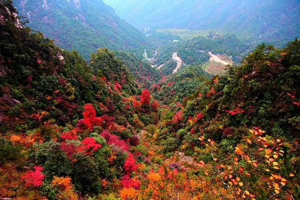 大明山赏秋、青山湖水上森林、琴湖飞瀑超值特价二日游