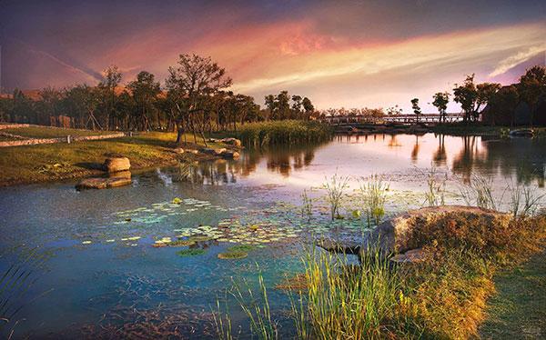苏州太湖湿地、西京湾花海、刺绣博物馆、秋季品蟹、西山采橘一日游