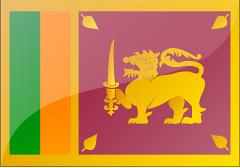 斯里兰卡个人旅游电子签证