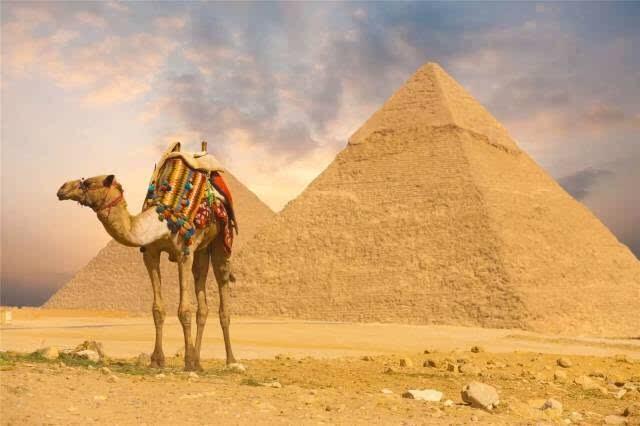 【12月】埃及(卢克索+红海3N)9天神秘之旅(上海往返)