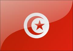 突尼斯個人商務簽證