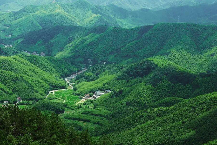 【1月】江南名山莫干山 西湖漫步 锦绣风水洞 天然氧吧二日游