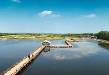【9月】泰州溱湖湿地 李中千亩水上森林 五星碧桂园 尊享休闲二日游