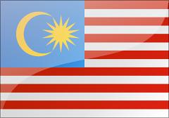 馬來西亞個人旅游電子簽證(15天停留)
