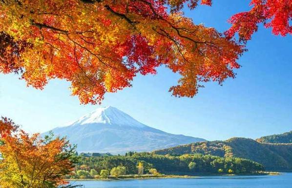 【中旅自组】日本本州双古都东京整日自由6日(无锡口岸)